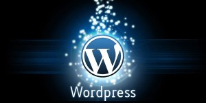 Wordpress-eklentileri (1)
